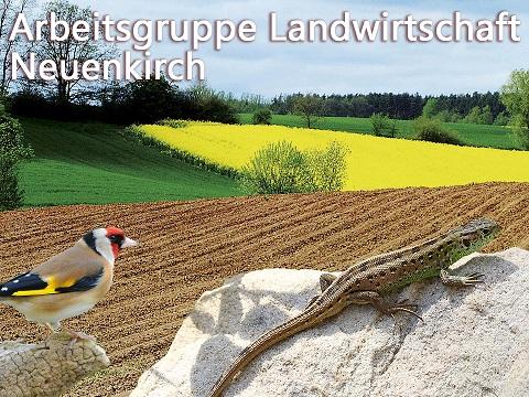 Landwirtschaft und Umwelt Neuenkirch